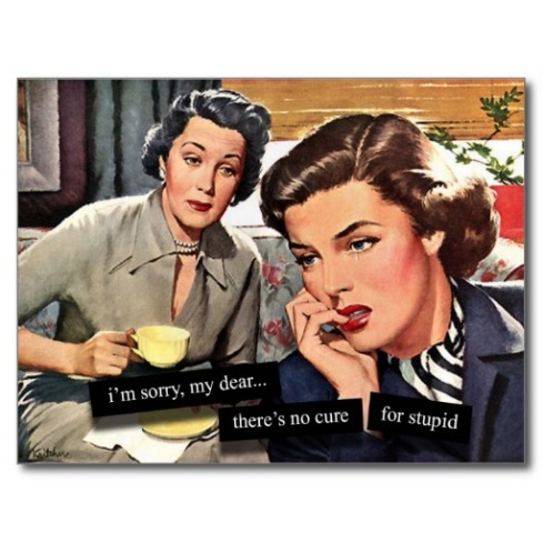 retro_1950s_housewife_no_cure_for_stupid_postcard-ra977eb8136a846fba16c3372639b90d1_vgbaq_8byvr_512